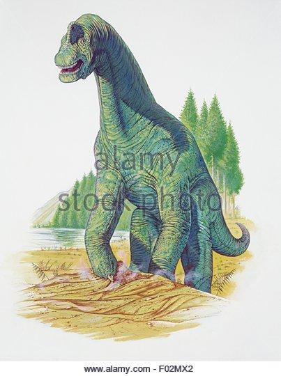 Upper Jurassic Era Stock Photos & Upper Jurassic Era Stock Images.