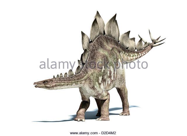 Upper Jurassic Stock Photos & Upper Jurassic Stock Images.