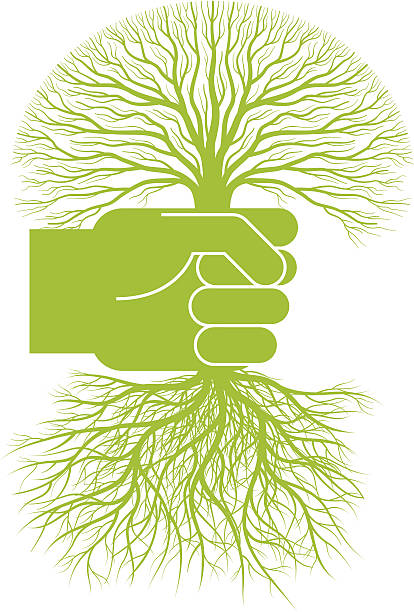 Uprooted Tree Clip Art, Vector Images & Illustrations.