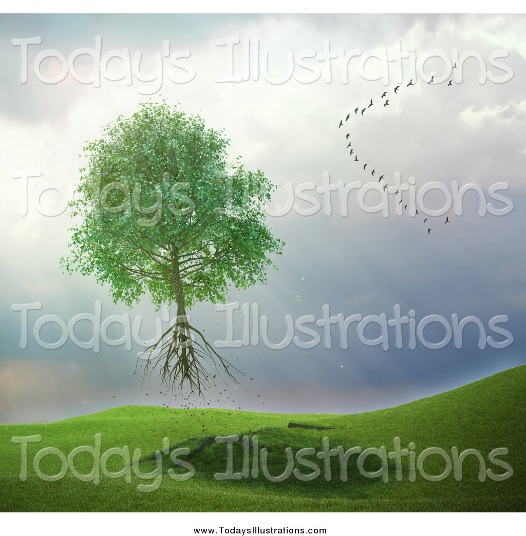 Royalty Free Stock New Designs of Roots.