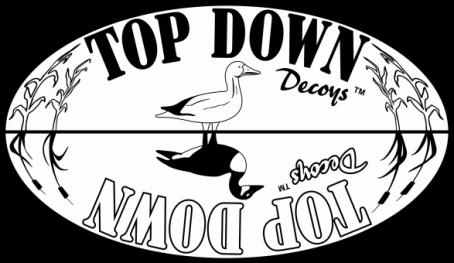 Top Down Decoys.