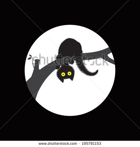Black Cat Halloween Stock Images, Royalty.
