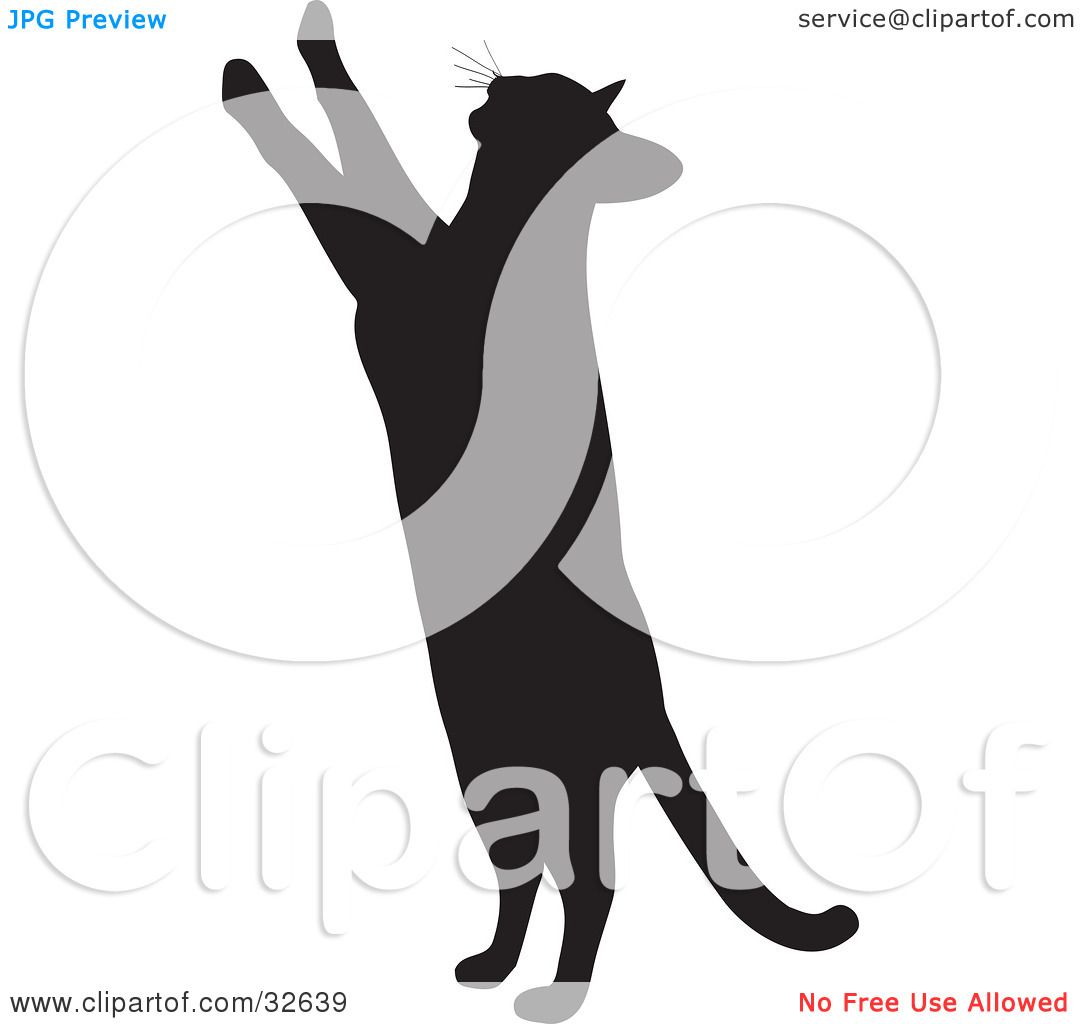 Clipart Illustration of a Curious Cat Silhouetted In Black.