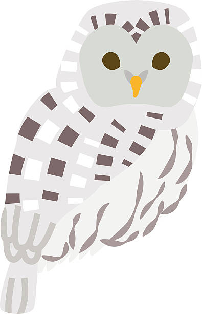 Ural Owl Clip Art, Vector Images & Illustrations.