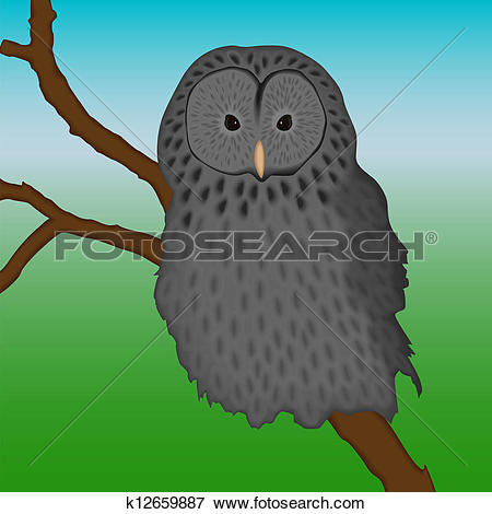 Clip Art of ural owl sitting on a branch k12659887.