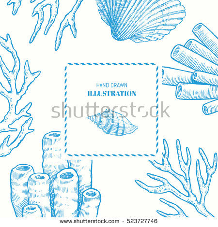 Sea Sponge Vector Stock Photos, Royalty.