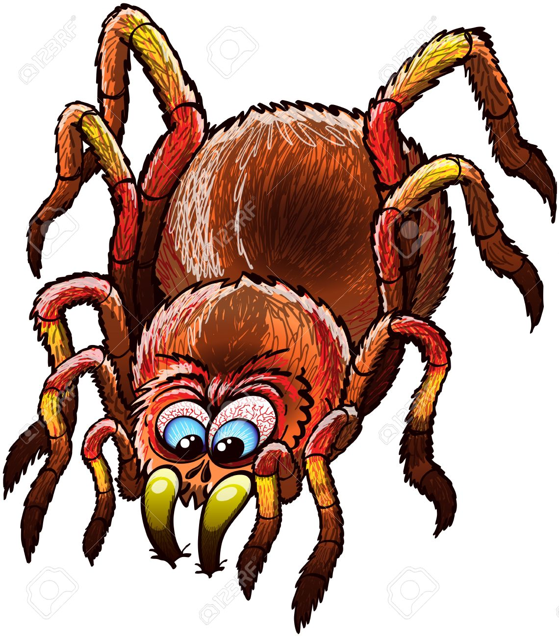 Big And Determined Tarantula With Urticating Hairs, Long Legs.