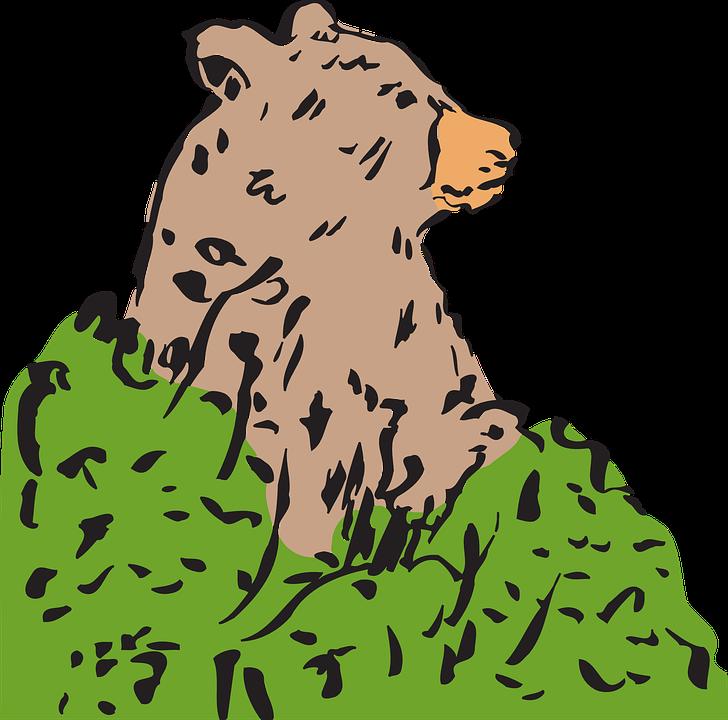 Free vector graphic: Bear, Brown Bear, Ursus, Ursidae.