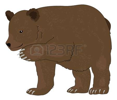 69 Ursus Arctos Stock Illustrations, Cliparts And Royalty Free.