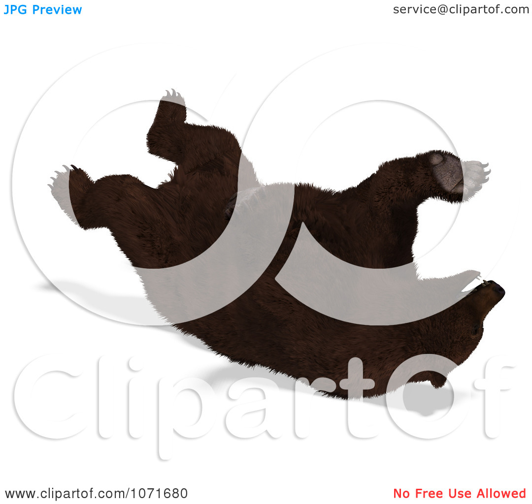 Clipart 3d Ursus Arctos Brown Bear Rolling On Its Back.