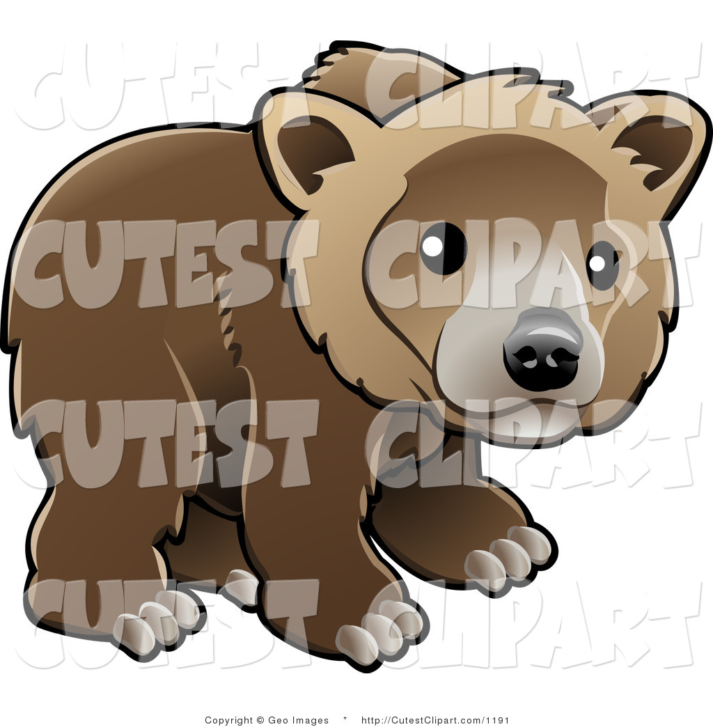 Royalty Free Stock Cute Designs of Bear Cubs.