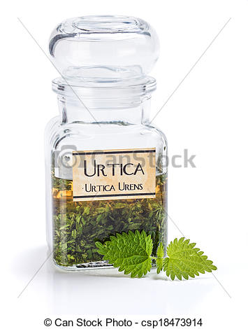 Stock Photography of Urtica Urens plant extract.