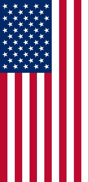 Vertical United States Flag clip art Free vector in Open.