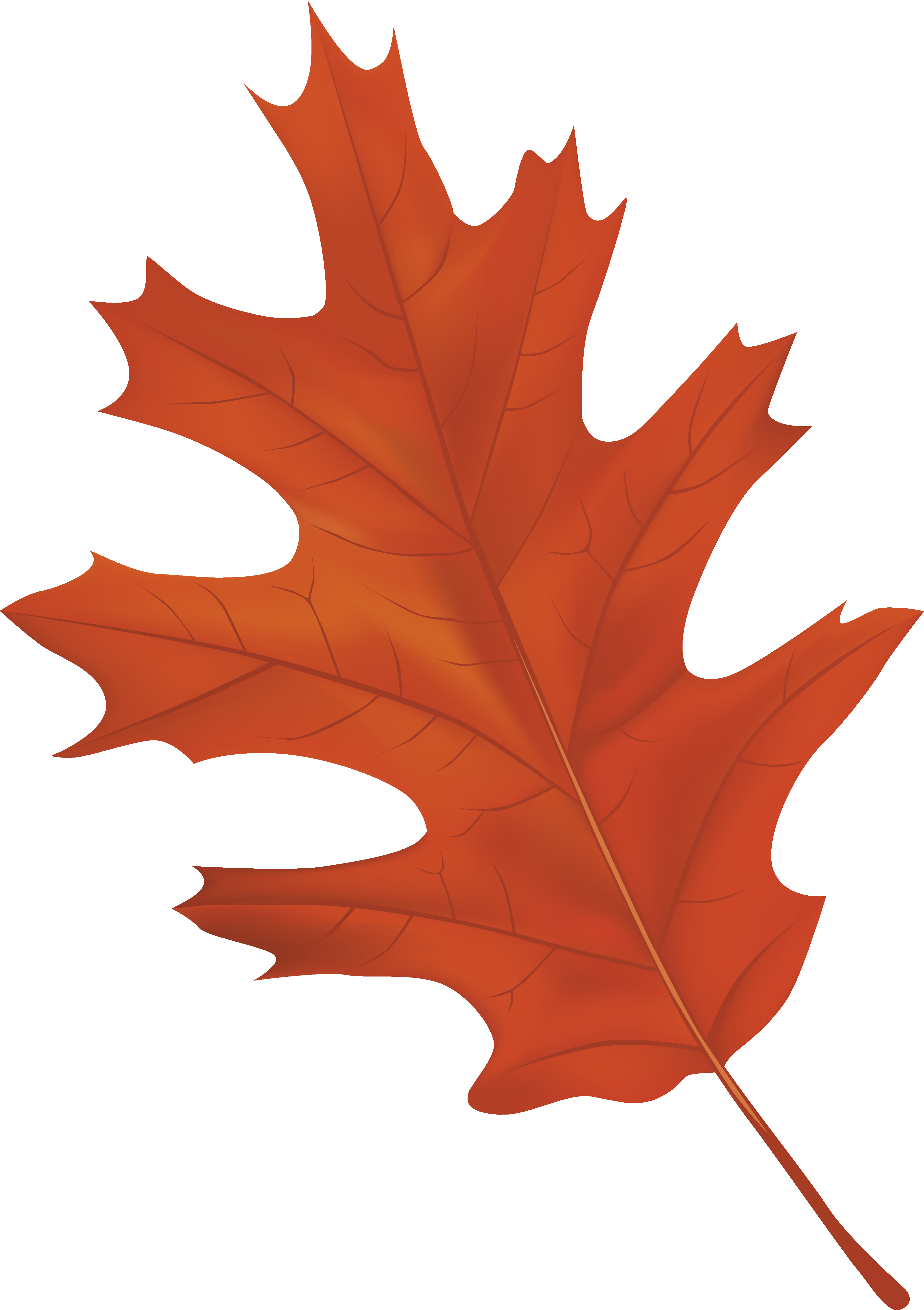 Brown Autumn Leaf PNG Clipart Image.