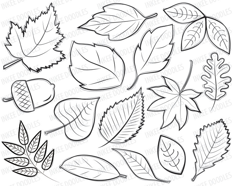 Autumn Leaves Digital Stamps Clipart black by InkeeDoodles.