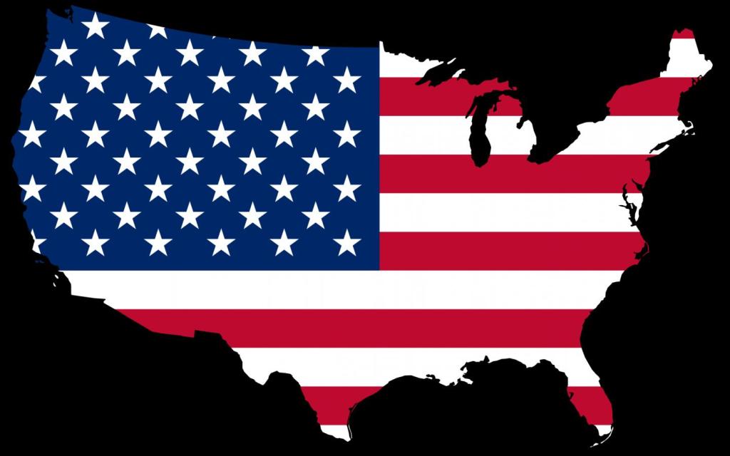USA Map Flag Vector Image (1115).