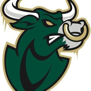 Usf bulls clipart 4 » Clipart Station.
