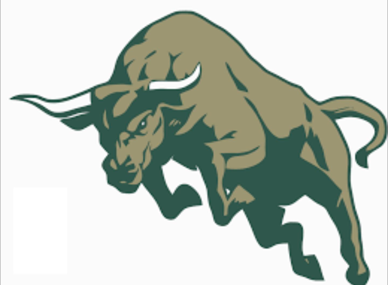 USF Bulls.
