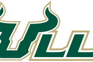 Usf bulls clipart » Clipart Station.