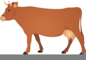 Clipart Vache Limousine.