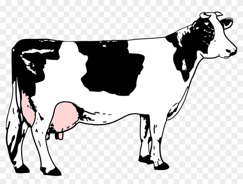 Beef Vector Holstein Cow.