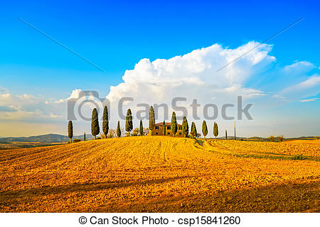 Stock Image of Tuscany, farmland and cypress trees and white road.