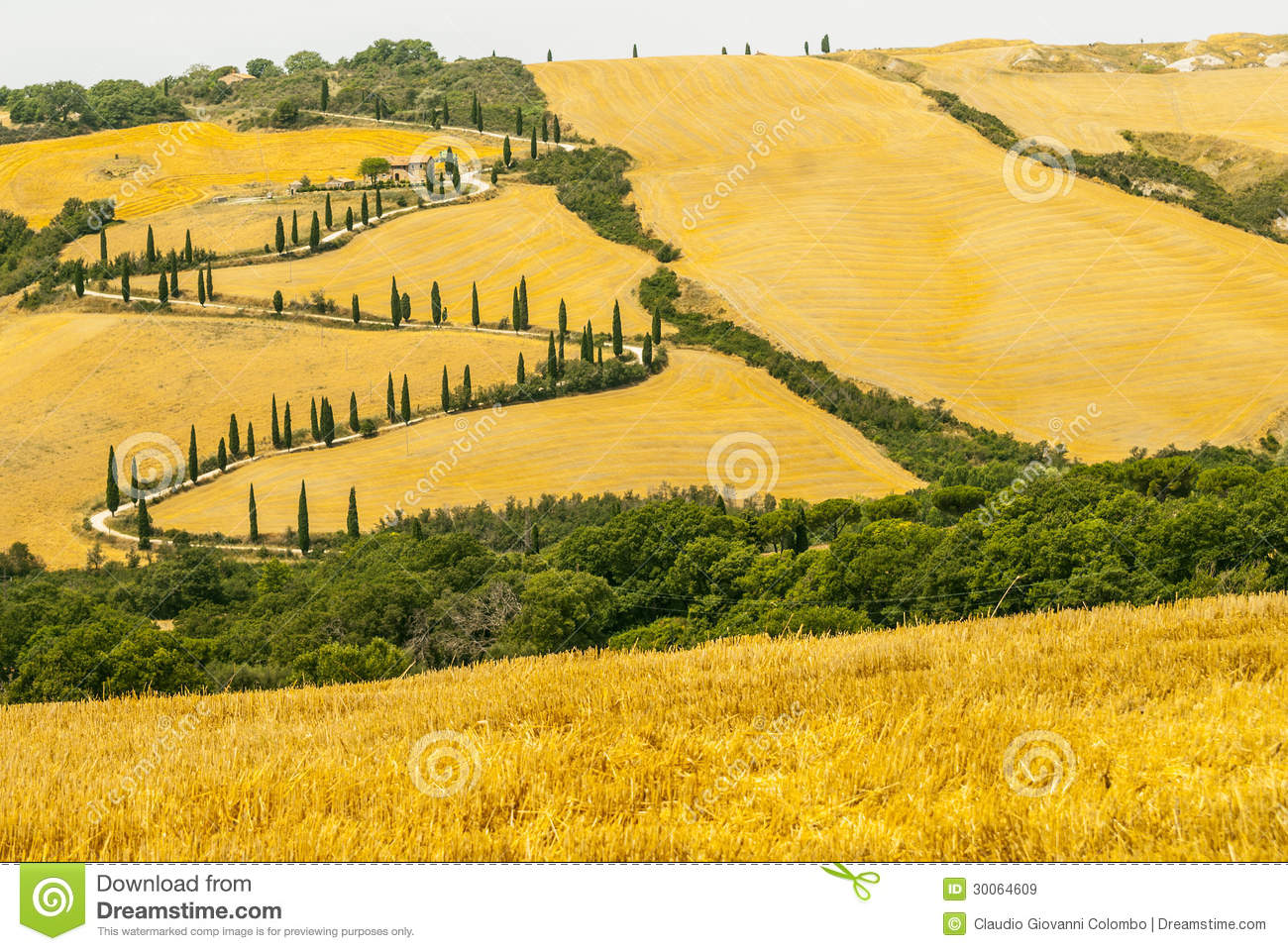 Landscape In Val D'Orcia (Tuscany) Royalty Free Stock Images.