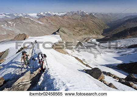 """Stock Image of """"Hikers on the summit ridge ascending to Similaun."""
