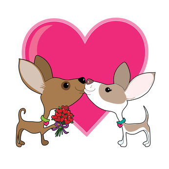 Pictures of Dogs for Valentines Day.