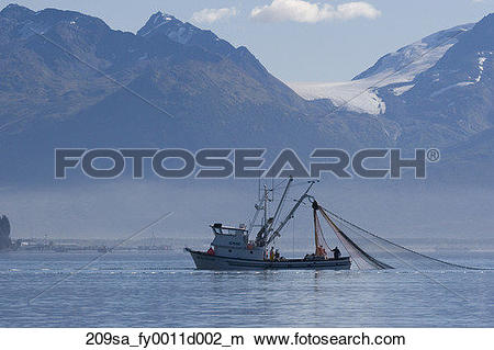 Stock Photo of Commercial seiner fishing boat working in Port.