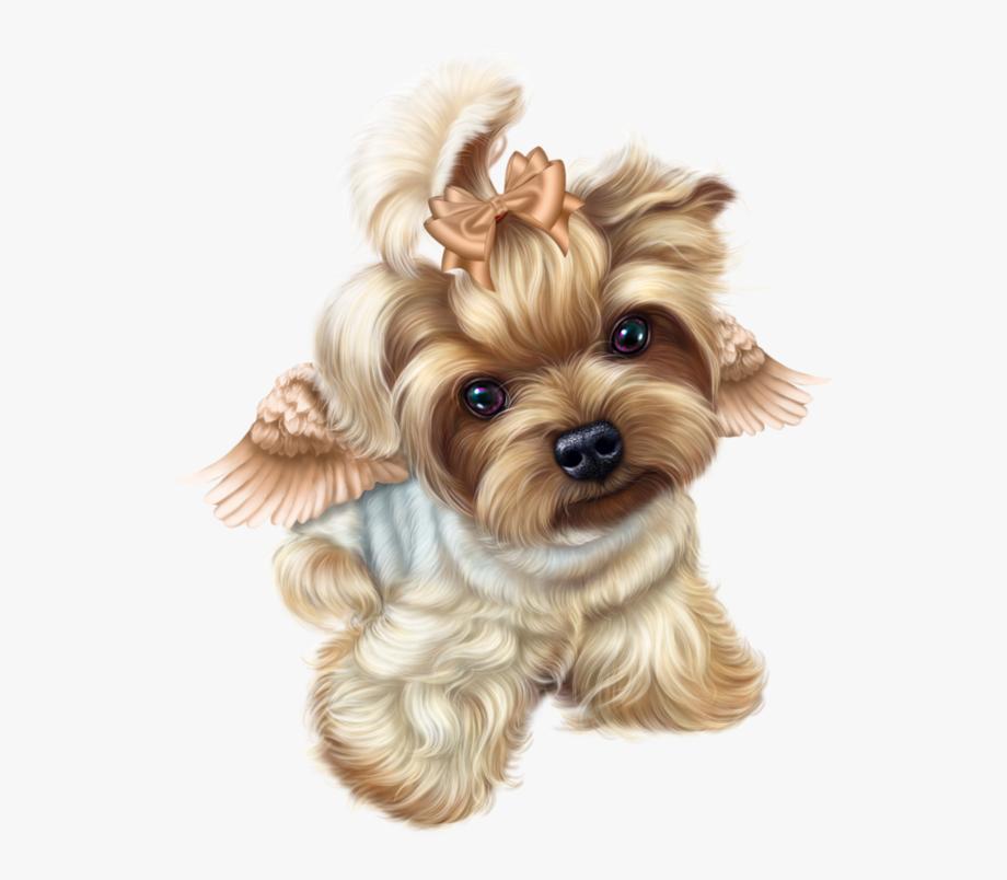 Yorkie Clipart Pet.