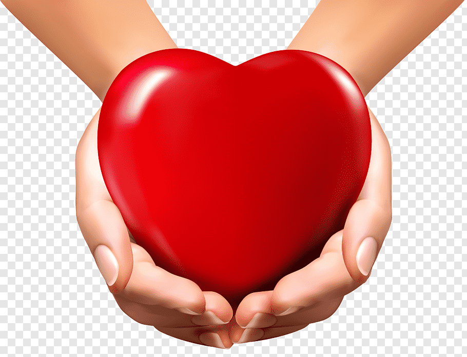Person holding red heart decor, Heart in Hand Heart in Hand.