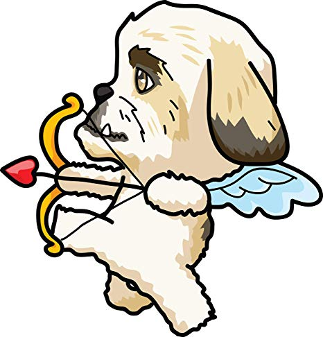 Amazon.com: Adorable Puppy Dog in Cupid Costume Cute.