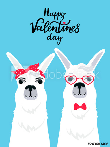 Couple in love llamas. Greeting card for Valentine\'s Day.