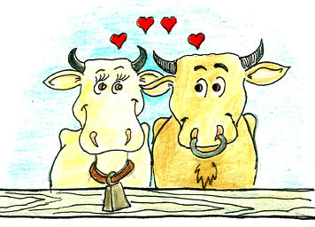 Valentine Cow Clipart.