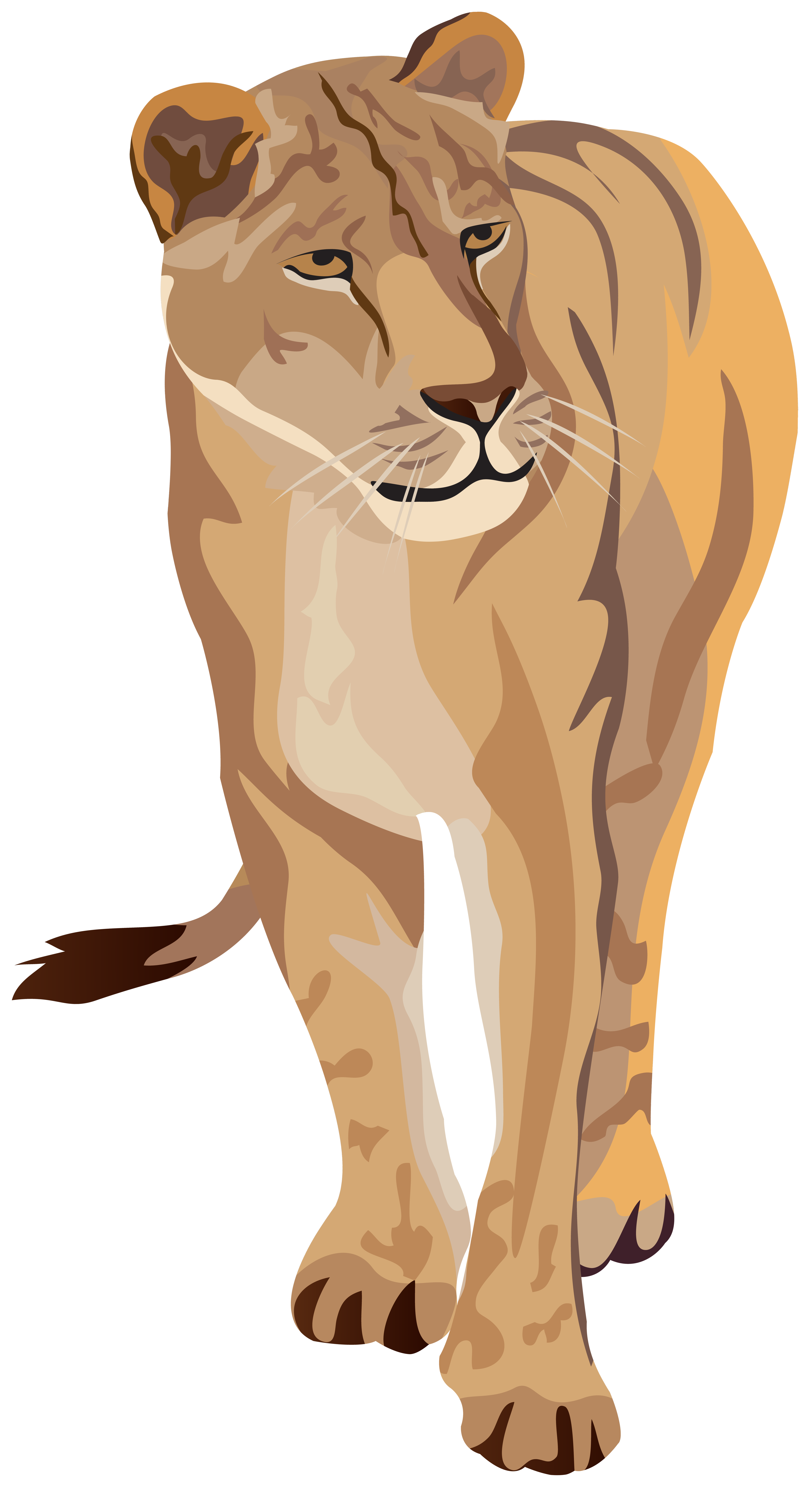 Lioness Clipart Image.