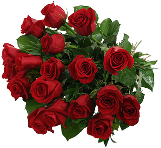 Valentine Day Flower PNG Pic.