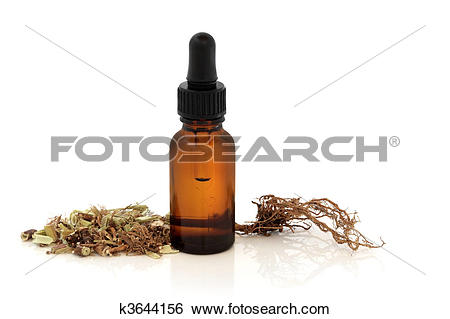 Stock Images of Valerian Root and Tincture Bottle k3644156.