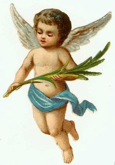 Fairies, Lily of the valley and Lilies on Pinterest.