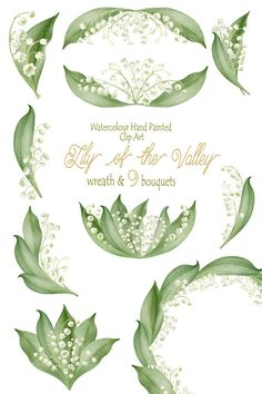 Lily of the Valley by Moonie.