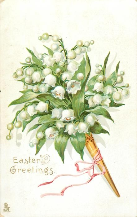 1000+ images about lily of the valley on Pinterest.