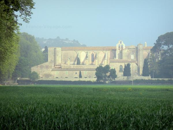 The Valmagne abbey.