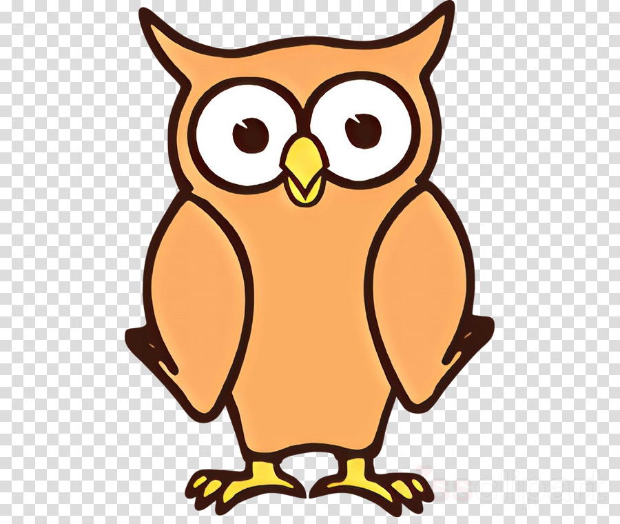 owl bird cartoon bird of prey eastern screech owl clipart.