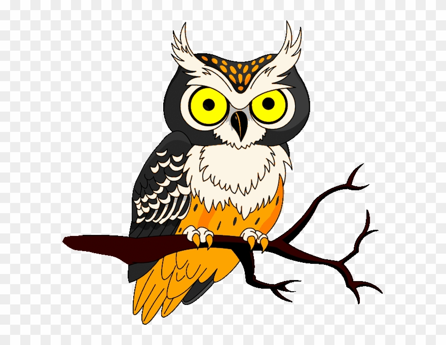 Halloween Owl Clipart 633 X 600 42964 Bytes.