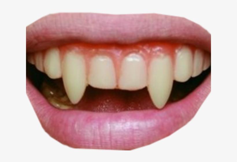Vampire Teeth Png Transparent PNG.