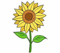 Painting clipart sunflower van gogh, Picture #1813562.