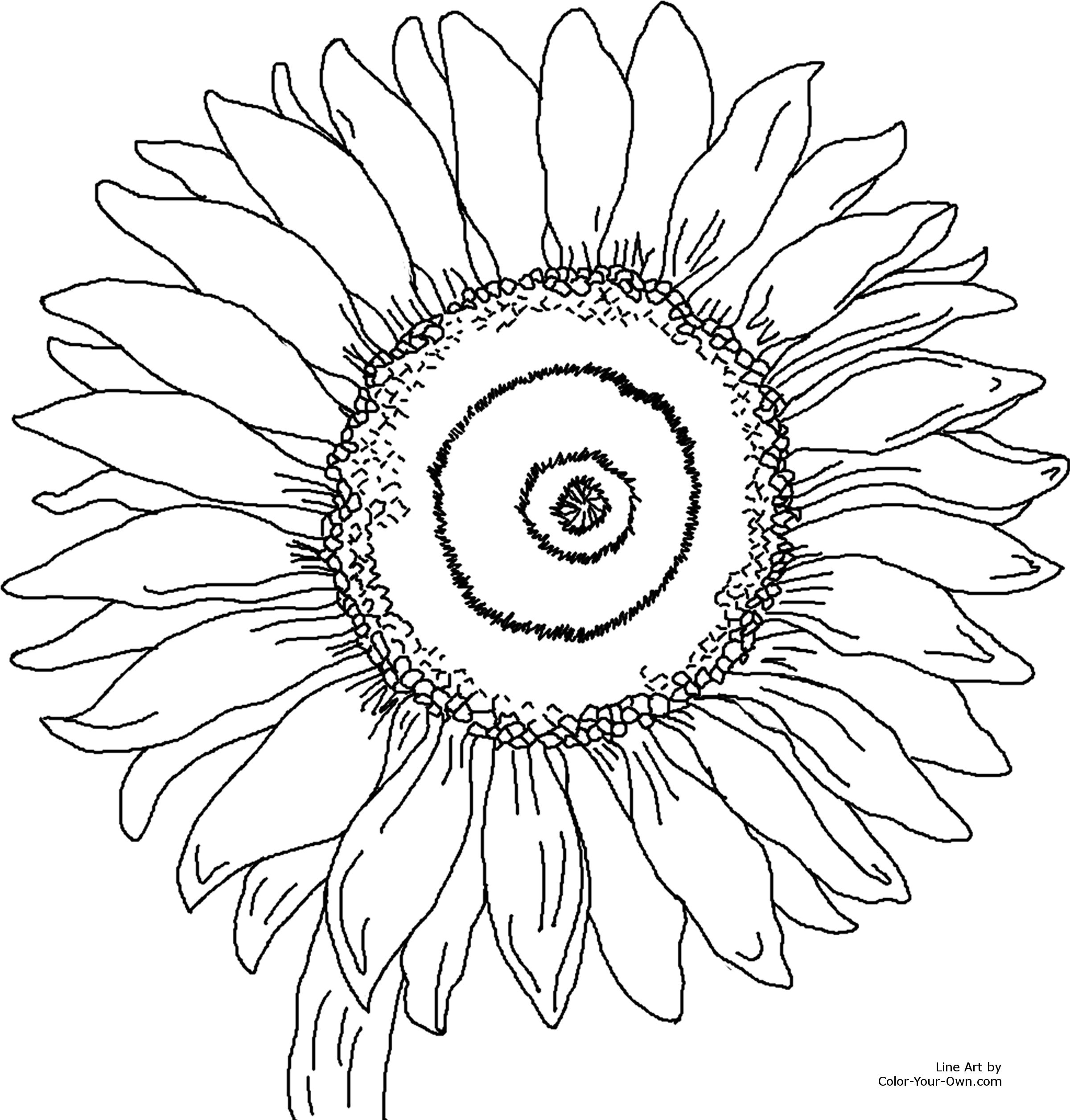 Van Gogh Sunflowers Coloring Page at GetDrawings.com.