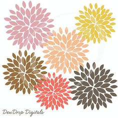 Blooming Blossom Vector Flowers.