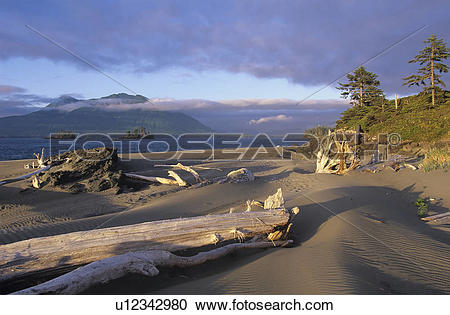 Stock Photography of Clayoquot Sound, Whaler Island, sand dunes.