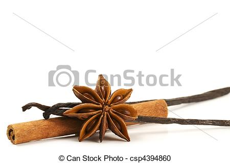 Stock Photography of cinnamon stick, star anise and two vanilla.